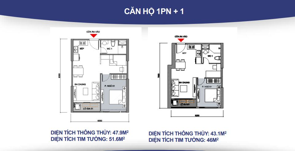 Mặt bằng căn hộ 1 phòng ngủ + 1